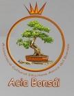 Acia Bonsai