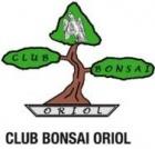 Bonsai Oriol