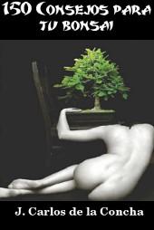 Consejos practicos para mantener la salud y bienestar de tu bonsai
