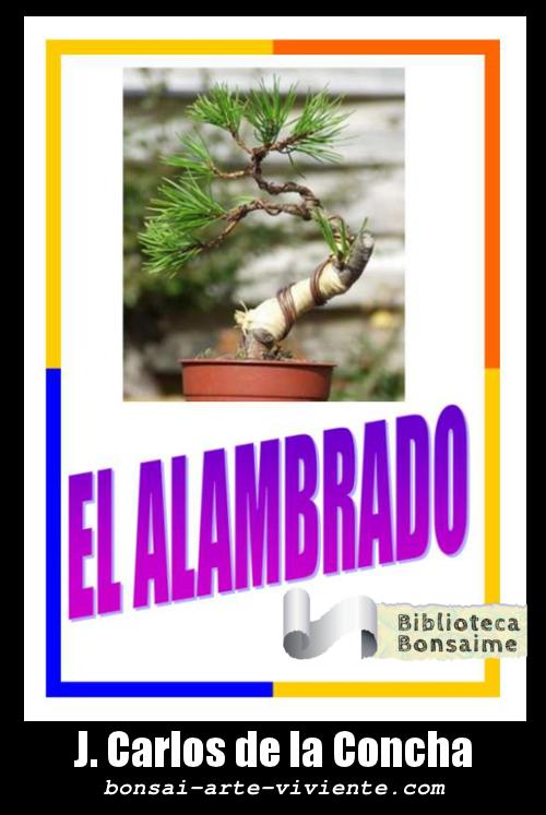 El Alambrado