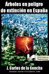 Arboles en Peligro de extinción en España