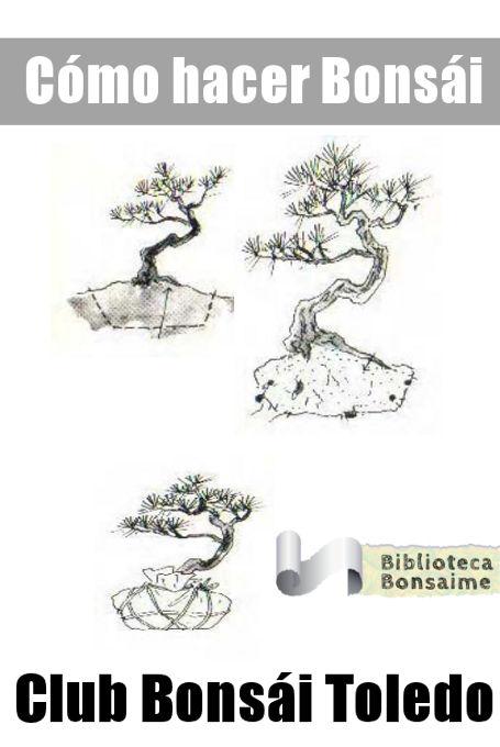Como hacer bonsai