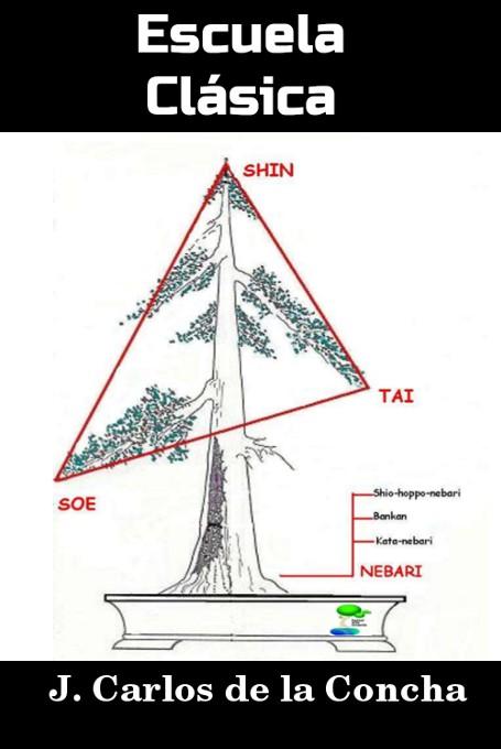 Dise o de bonsai escuela lineal clasica de j carlos de - Libros de bonsais ...