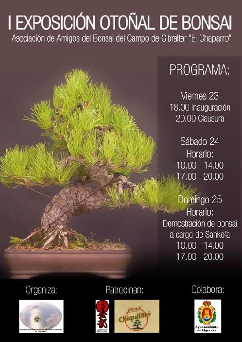 I Exposición Bonsái El Chaparro