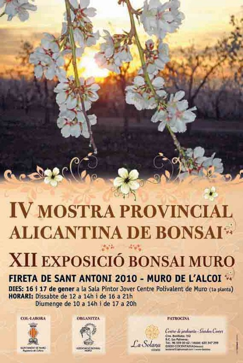 II Mostra Provincial Alicantina 2010