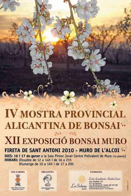II Mostra Provincial Alicantina 2010