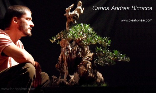 Carlos Andres Bicocca