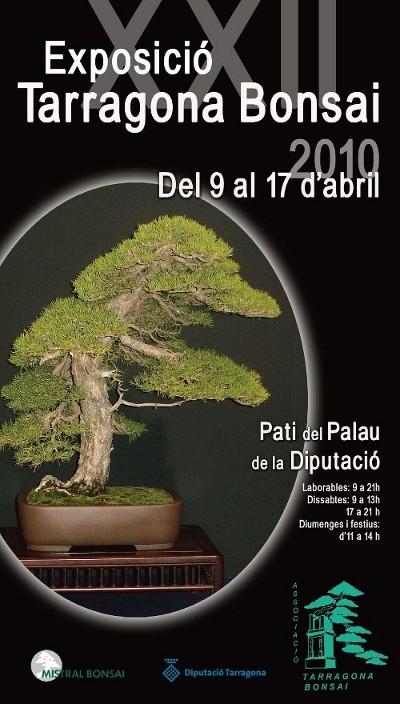 25 Exposicion Bonsai Tarragona