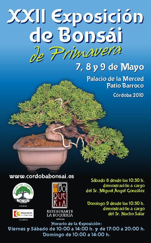 XXII Exposicion Bonsai Primavera Cordoba