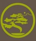 amigos del bonsai lorca