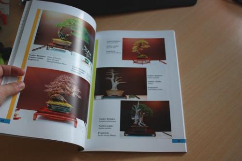 libro congreso bonsai lorca